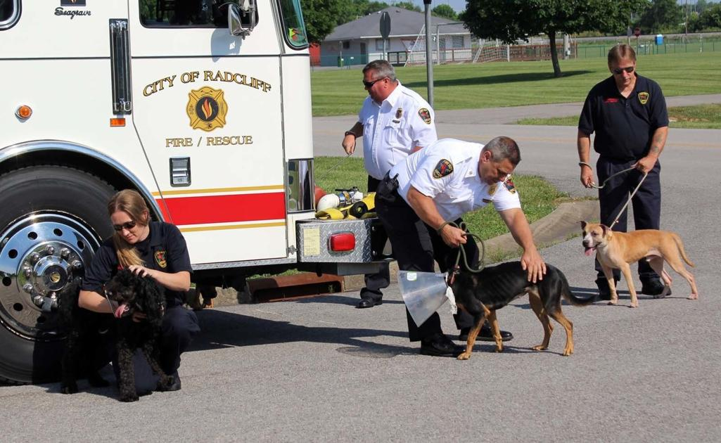 Local firefighters step in front of the camera to support shelter pets - Elizabethtown News Enterprise