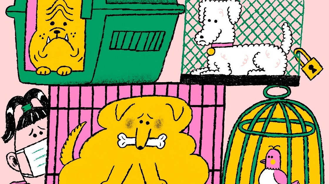 What Will Become of the Pandemic Pets? - The New Yorker